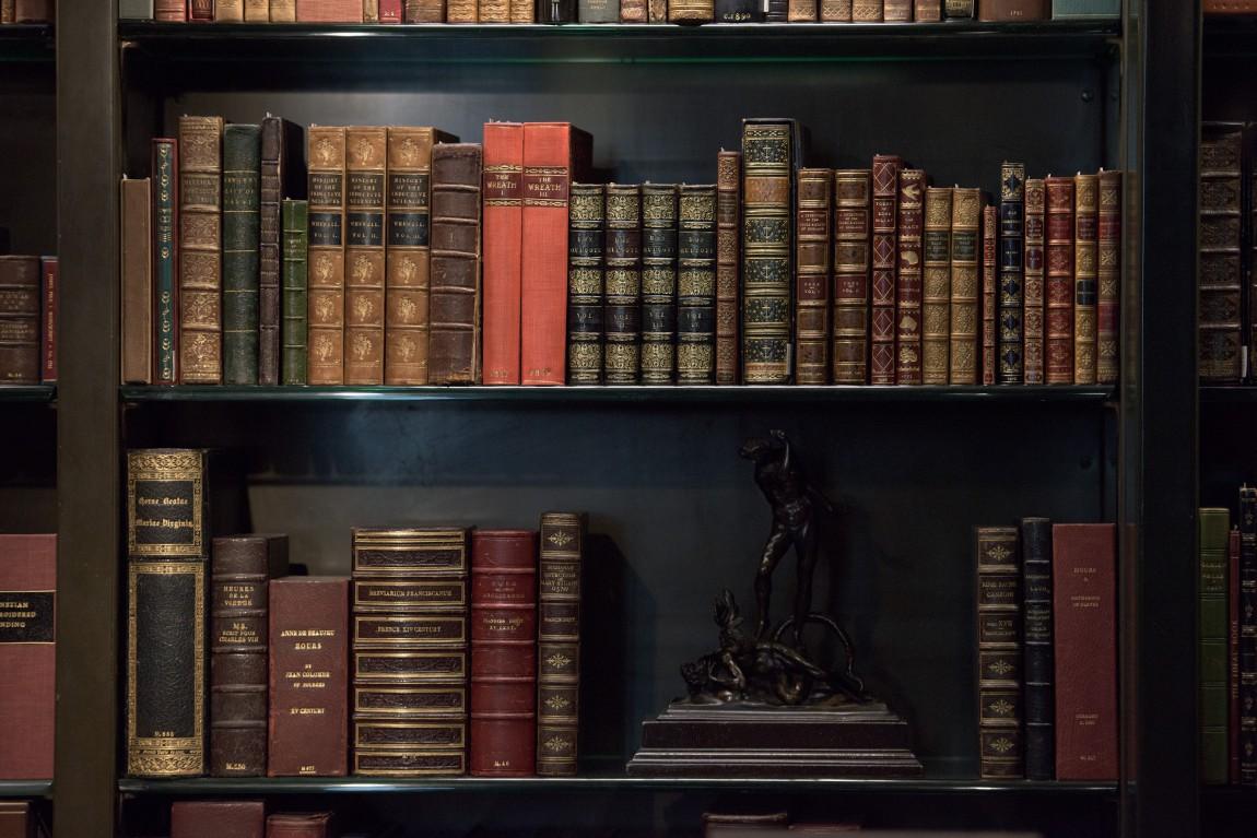 Antique and rare Books Shelf